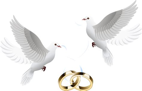 Doves clipart marriage Doves marriage Transparent FREE