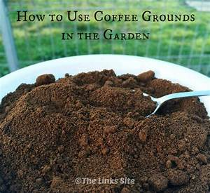 how to use coffee grounds in the garden the links site