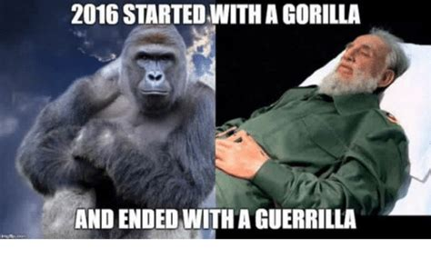 Gorilla Warfare Meme - gorilla warfare meme 100 images 25 best memes about buzzkill buzzkill memes gorilla warfare