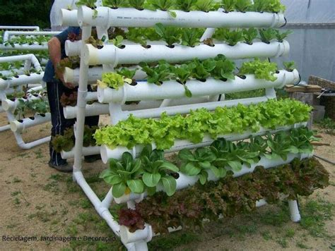 a garden in pvc piping hydroponic vegetables