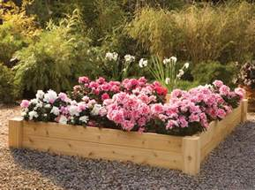 Wood Used For Raised Garden Beds by Cedar Raised Flower Beds Interesting Ideas For Home