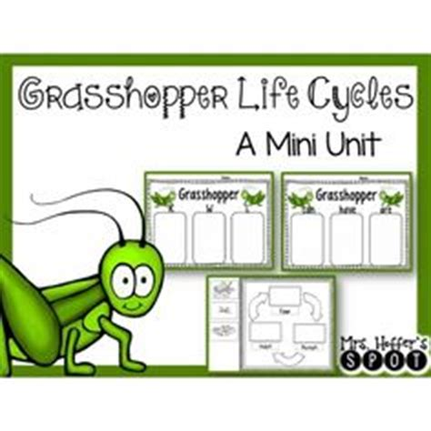 fable freebie the ant and the grasshopper 3rd grade