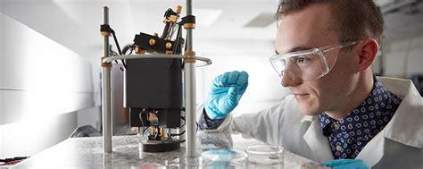 nanotechnology engineering undergraduate programs