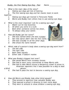 buddy    eye dog multiple choice test