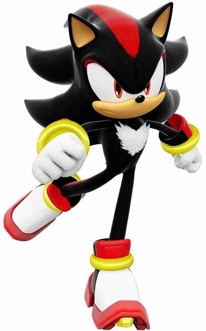 Shadow Hedgehog Sonic Skating 3d Knuckles Echidna