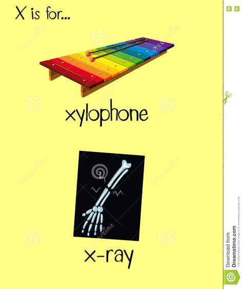 letter x words www pixshark com images galleries with
