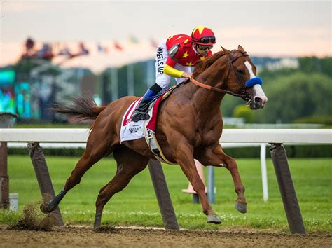 horse justify racing stakes belmont horses triple crown winning thoroughbred american winners winner national questions racehorse champion eclipse america 13th