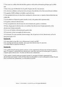 Transmission De L U0026 39 Information G U00e9n U00e9tique  U2013 3 U00e8me  U2013 Exercices