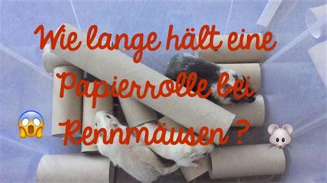 Wie Lange Hält Ein Geschirrspüler by Wie Lange H 228 Lt Eine Papierrolle Bei Rennm 228 Usen