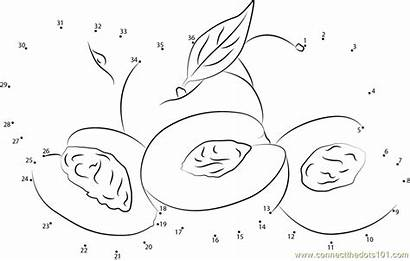 Dot Dots Nectarines Peaches Worksheet Connect