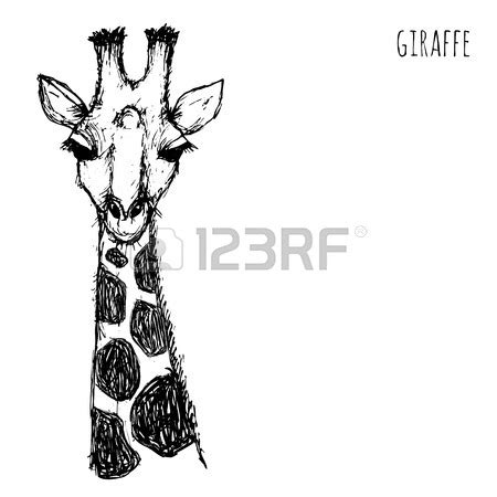 giraffe face drawing  getdrawings