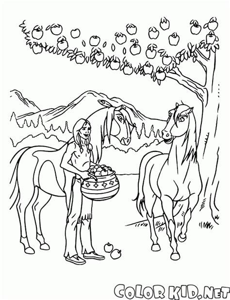 disegni da colorare spirit cavallo selvaggio