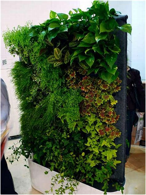 eco friendly home decoration ideas