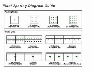 Plants Per Square Feet Chart
