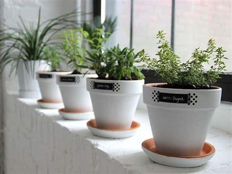 Window Sill Herb Garden Pots white windowsill herb garden pots indoor windowsill herb