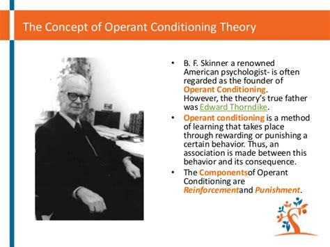 skinner operant theory