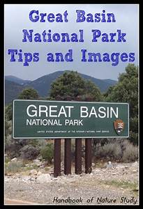 Great Basin National Park – Tips and Images