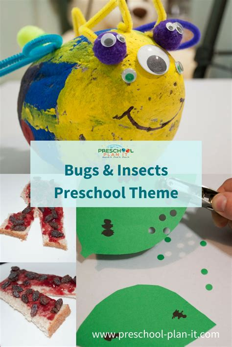 bugs  insects preschool theme