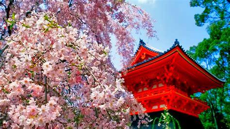 Hd Japan Image Amazing Images Background Photos 1080p