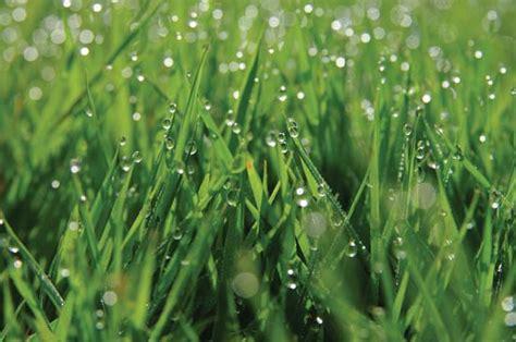 condensation phase change britannica