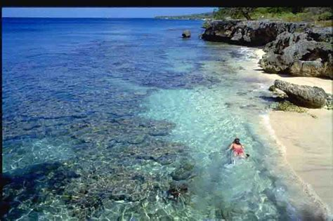 Best Dive Spots In The Caribbean by Bonair Known As One Of The Best Scuba Diving Spots In The