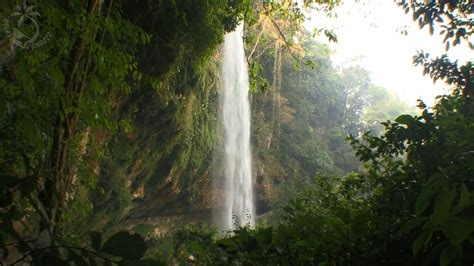 Waterfall & Jungle Sounds - Relaxing Tropical Rainforest ...