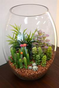 Pot A Cactus : du pot assorted cactus in glass lg 11 h succulent centerpiece pinterest cacti glass and ~ Farleysfitness.com Idées de Décoration