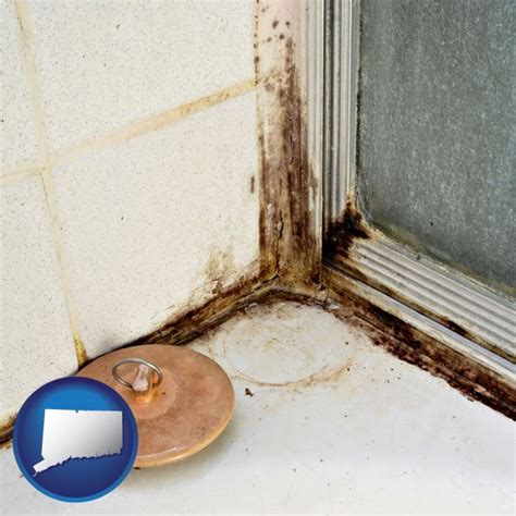 mold mildew prevention inspection removal  connecticut