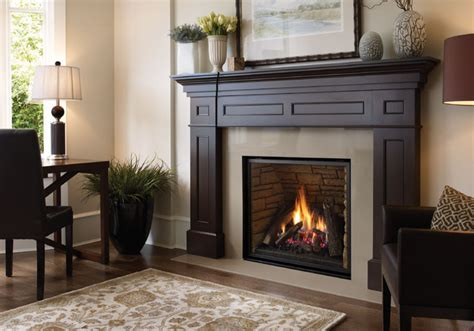 glass l chimney replacement regency liberty l965e gas fireplace traditional living