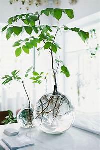 Plante De Salon : 32 sehr interessante vasen deko ideen ~ Teatrodelosmanantiales.com Idées de Décoration