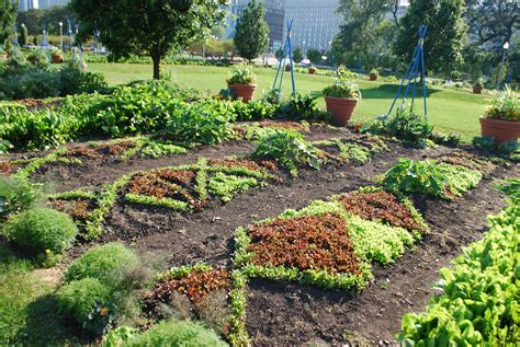 Garden Art : Hot Town, Summer In The City.