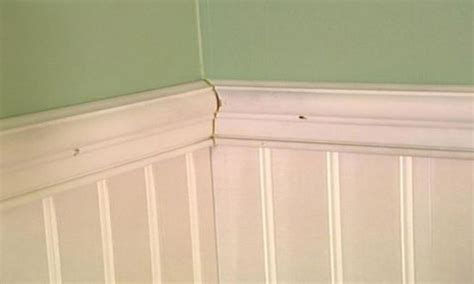 Wainscoting Planks by Ideas Add Interest To Any Room With Beautiful Wainscoting