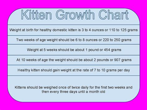 kitten growth chart poc