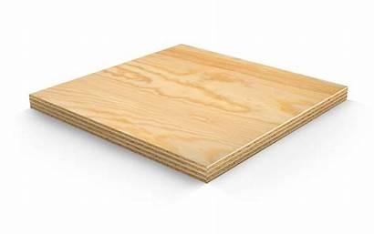Plywood Marine 12mm 2440 1220 Sheets Data