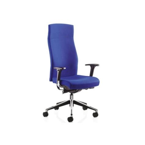 Physio Office Chair by Cl1 Class High Back Task Office Chair