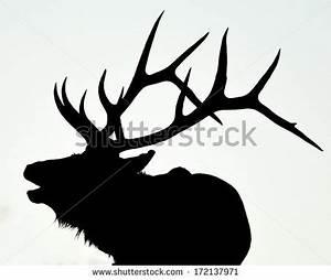 Elk Stock Photos, Royalty-Free Images & Vectors - Shutterstock