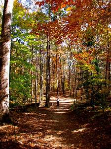 Sope Creek Trail Trail Running