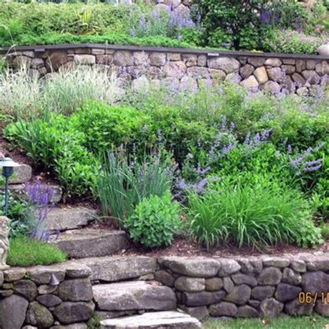 how to landscape a slope wonderful how to landscape a steep slope on a budget 76 with additional interior decorating with