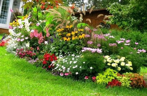 Cheap Low Maintenance Gardens Ideas On A Budget Easy