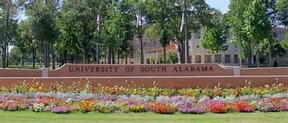 Alabama University South Nursing Bsn Rn Doctor