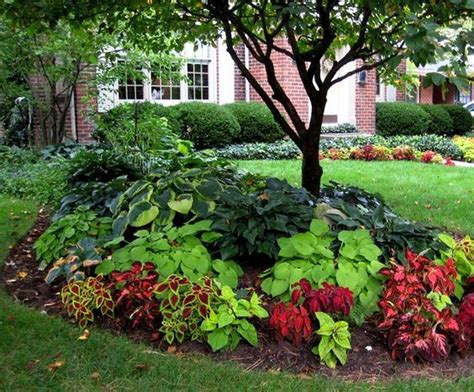 Best Shade Of by 10 Best Shade Garden Ideas For The Backyard Decoratoo