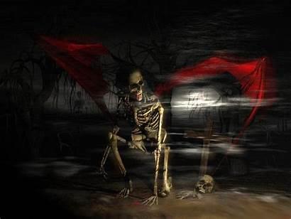 Wallpapers Skull Horror Horor Scary Skeleton Nature