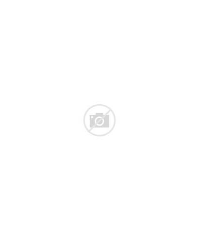 Hexagon Pattern Outline Field Silhouette Vectorstock Ever
