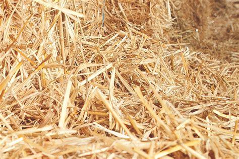 Stroh Als Dämmung by Wir Bauen Mit Nat 252 Rlichen Baustoffen Kardea