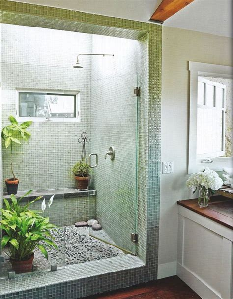 25 best ideas about bathroom plants on pinterest plants