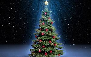 Green Christmas Tree Background Wallpapers