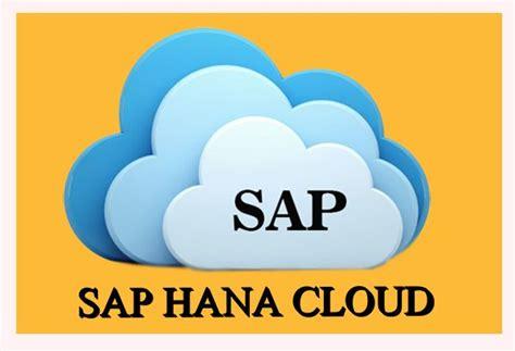 hana cloud what is sap hana cloud platform trade flock