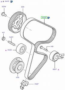 Service Manual  How To Replace Timing Belt 2012 Ford Focus