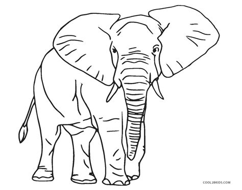 printable elephant coloring pages  kids coolbkids