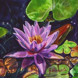 Pink Water Lily Blossom Tropical Flower - Floravita ...